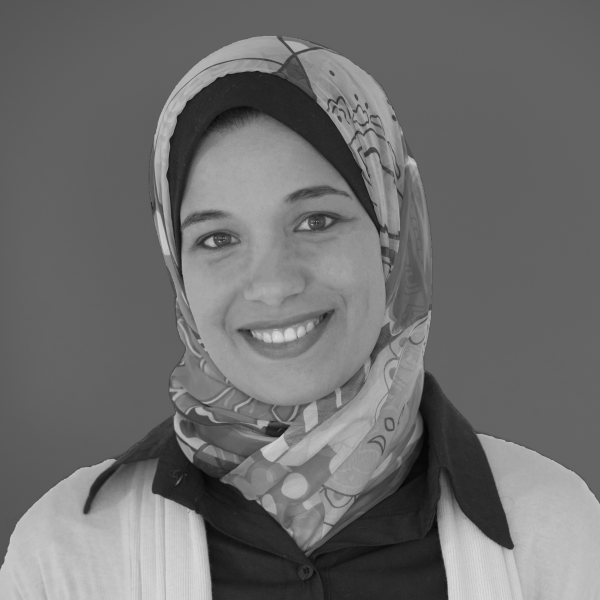 Sara Nabil : Postdoctoral fellow